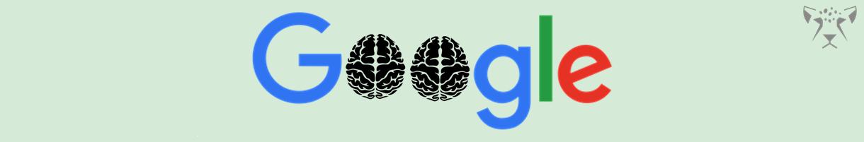 google brain algorithm