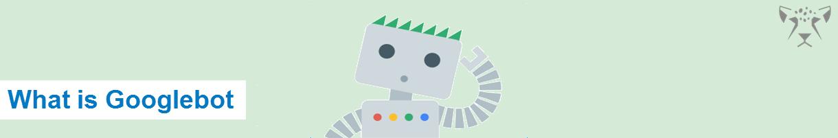 گوگل بت چیست