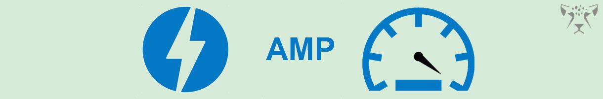 لزوم طراحی سایت امپ